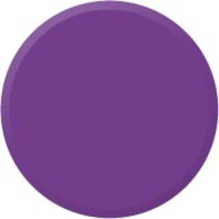 KAY DIRECT PURPLE